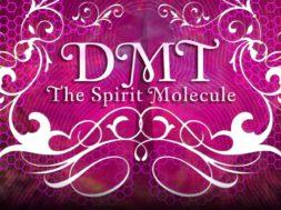 DMT – La Molécula Espiritual – 1
