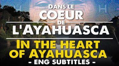 Dans le cœur de l'Ayahuasca