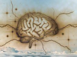 Notre cerveau crée l'illusion de la réalité